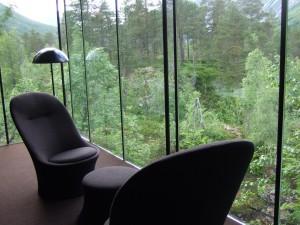 Ausblick aus einen Häuschen des Hotel Juvet