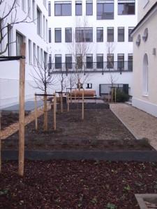 Ein Nutzgarten im Quartier Mitte