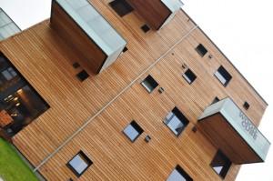 Unbehandelte Holzfassade des Woodcube bei der IBA in Hamburg