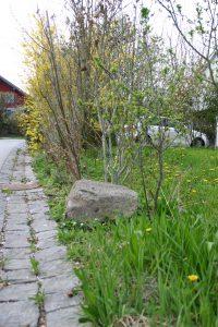 Granitstein und Sträucher neben der Straße
